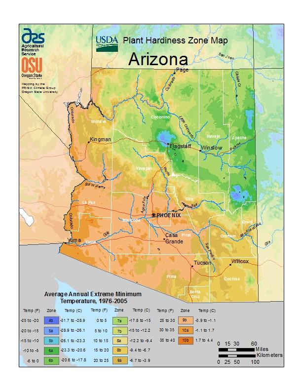 Arizona plant hardiness zones