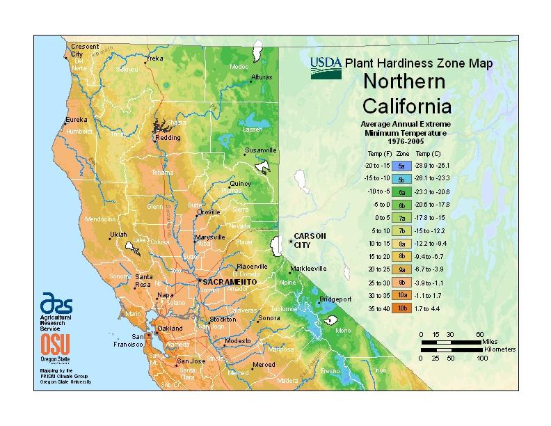 Northern california plant hardiness