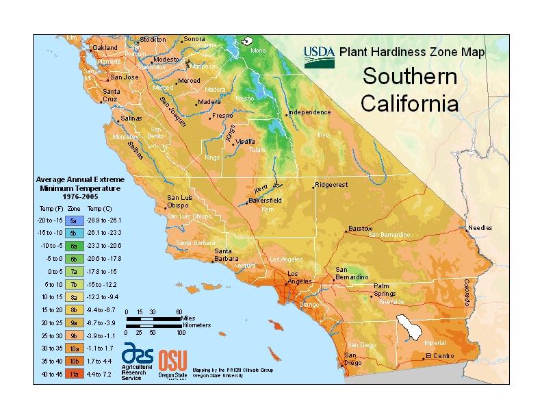 Southern california plant hardiness