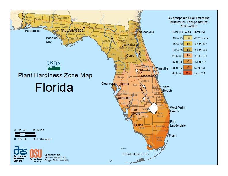 Florida plant hardiness zones