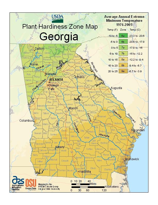 Georgia Plant Hardiness Zones