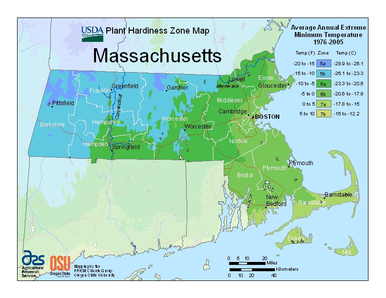 Massachusetts plant hardiness zones