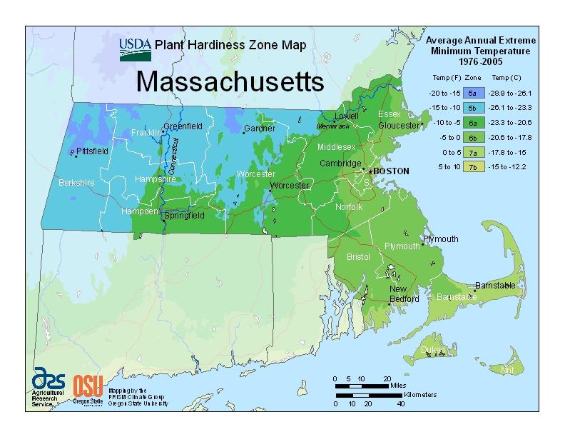 Massachusetts plant hardiness zones