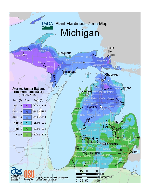 Michigan plant hardiness zones