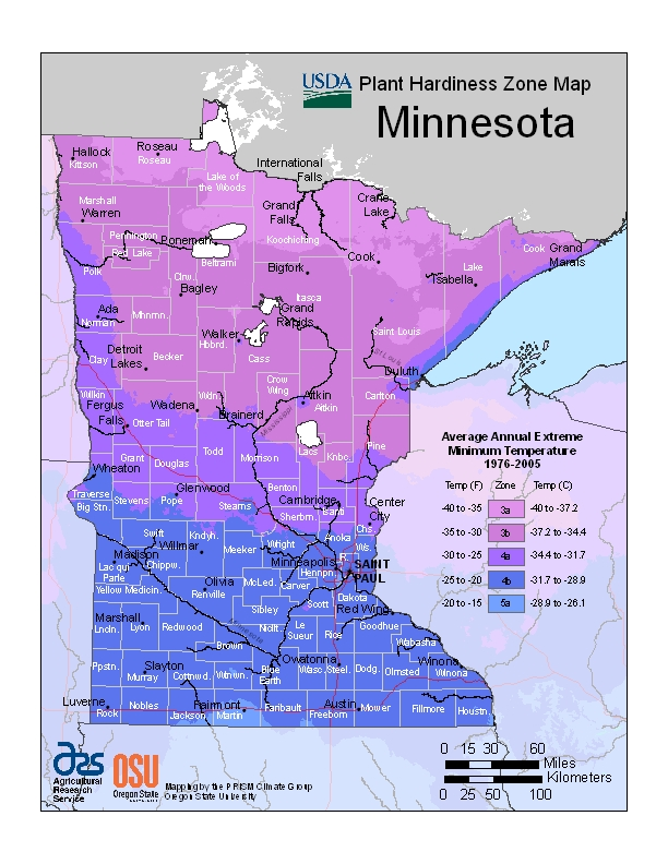 Minnesota plant hardiness zones