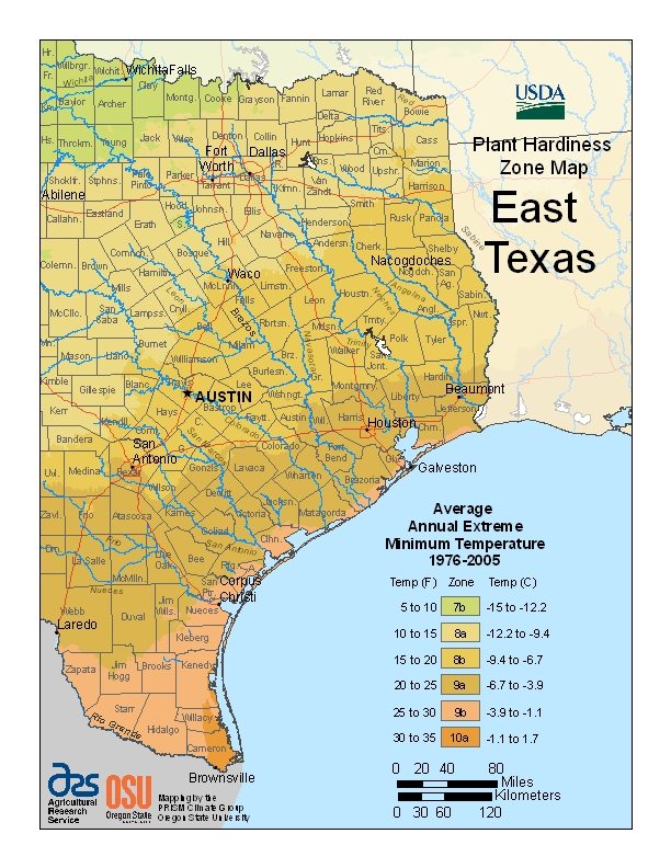 East Texas plant hardiness zones