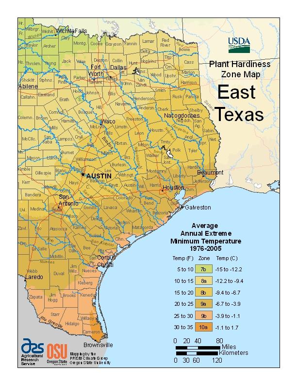 East Texas plant hardiness zones