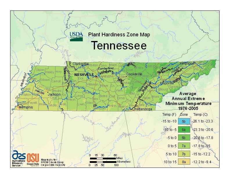 Tennessee plant hardiness zones