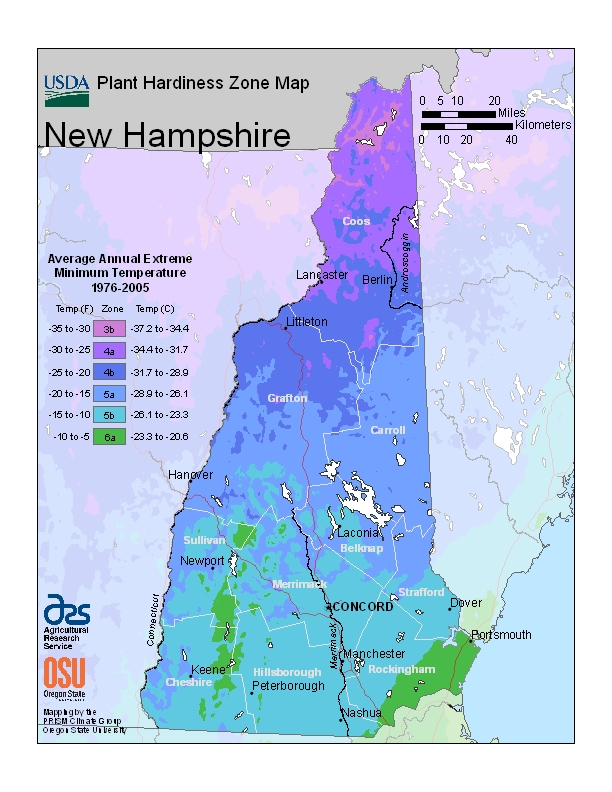 New Hampshire plant hardiness zones