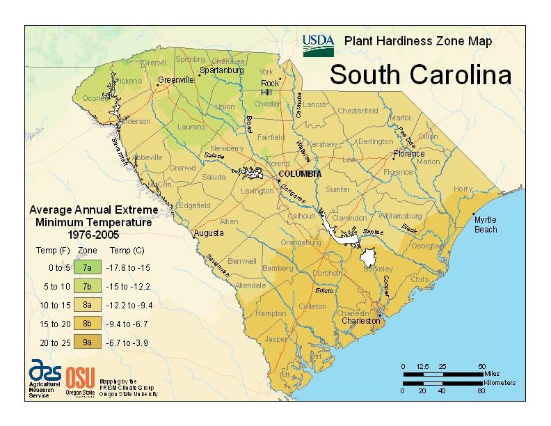 South Carolina plant hardiness zones