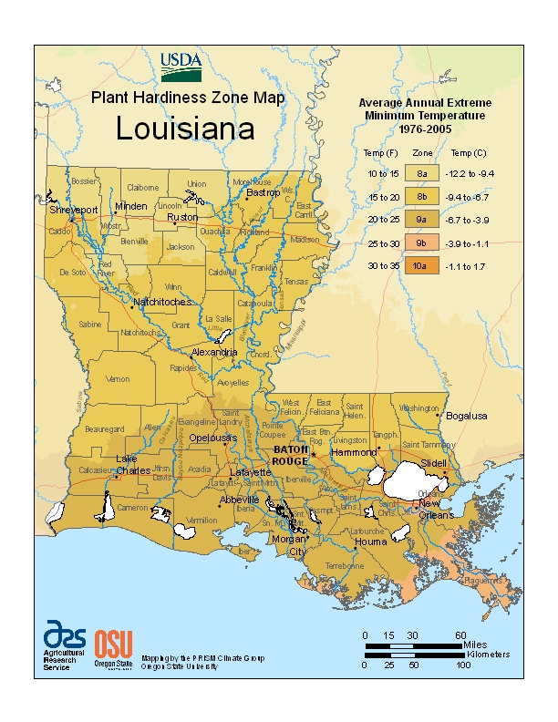 Louisiana plant hardiness zones map